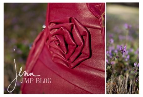 camera bag and flower